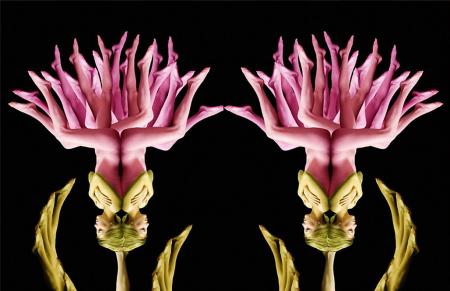 WOMEN flower 14